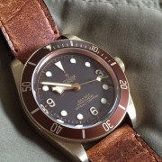Watch Reviews: Tudor Black Bay Bronze vs. Omega Seamaster 300