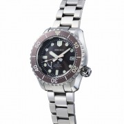 Introducing the SEIKO PROSPEX LX Line Limited Editions